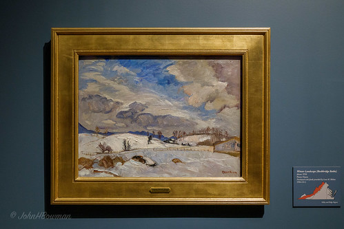 virginia richmond museums canon24704l virginiahistoricalsociety landscapes paintings oilpaintings december winterscenes 2017 virginiascenes december2017 availablelight