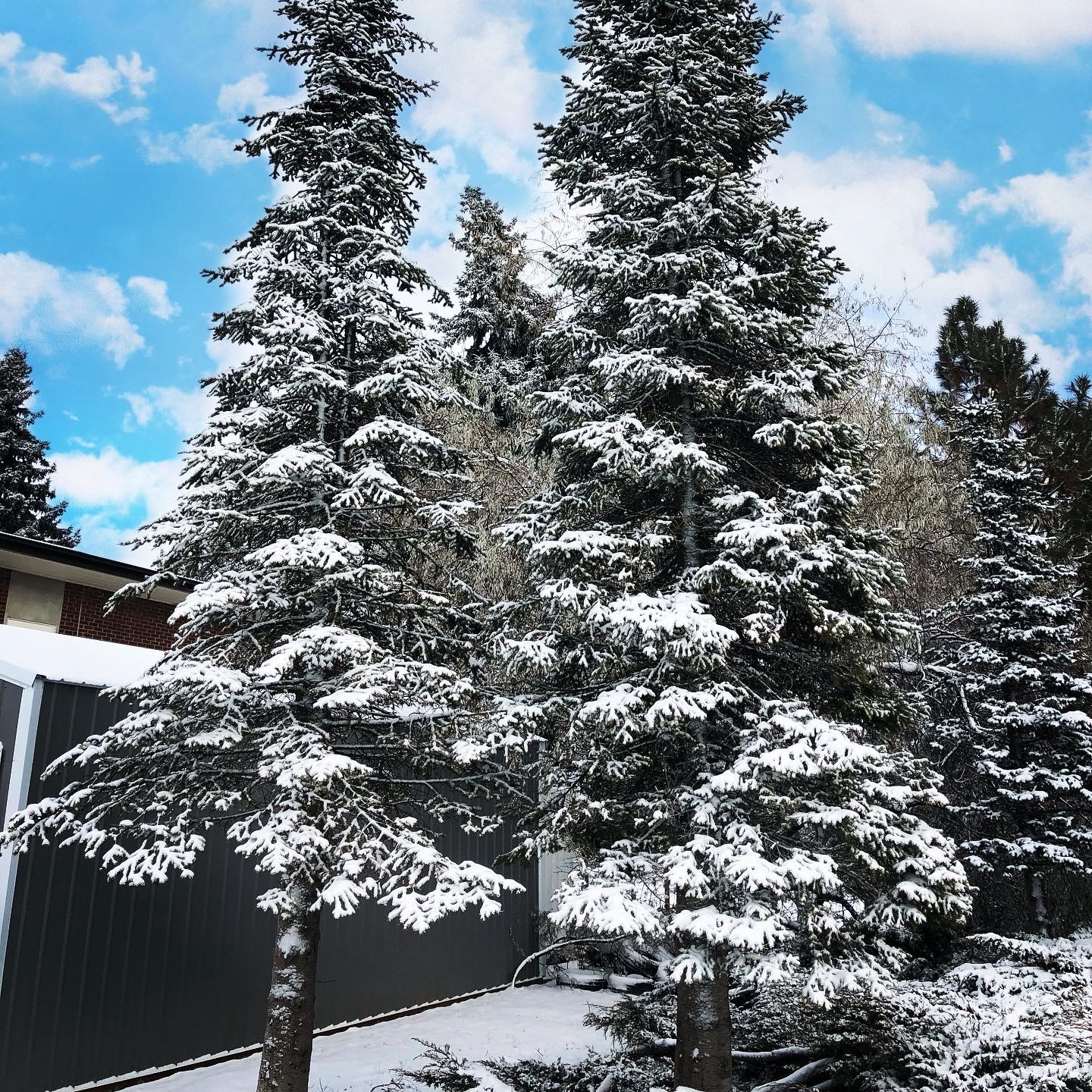 December 2019 Pictures from Eastern Washington University