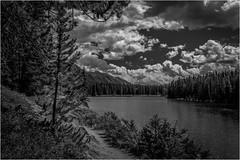 Johnson Lake by Ron Szymczak Award & POM Monochrome Prints Dec. 2019
