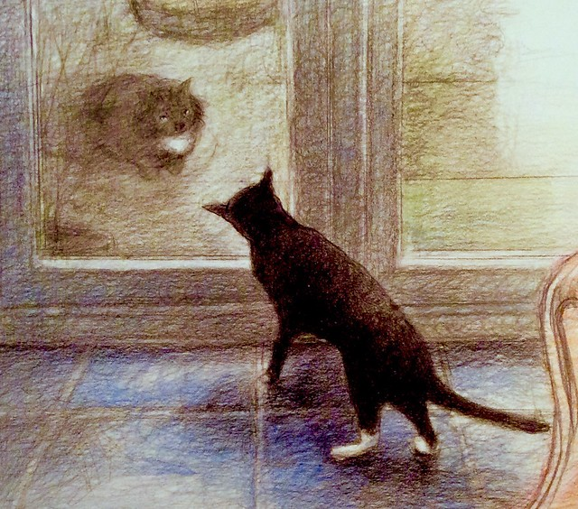 Jenkins neighbour. Coloured pencil drawing on card, by jmsw.