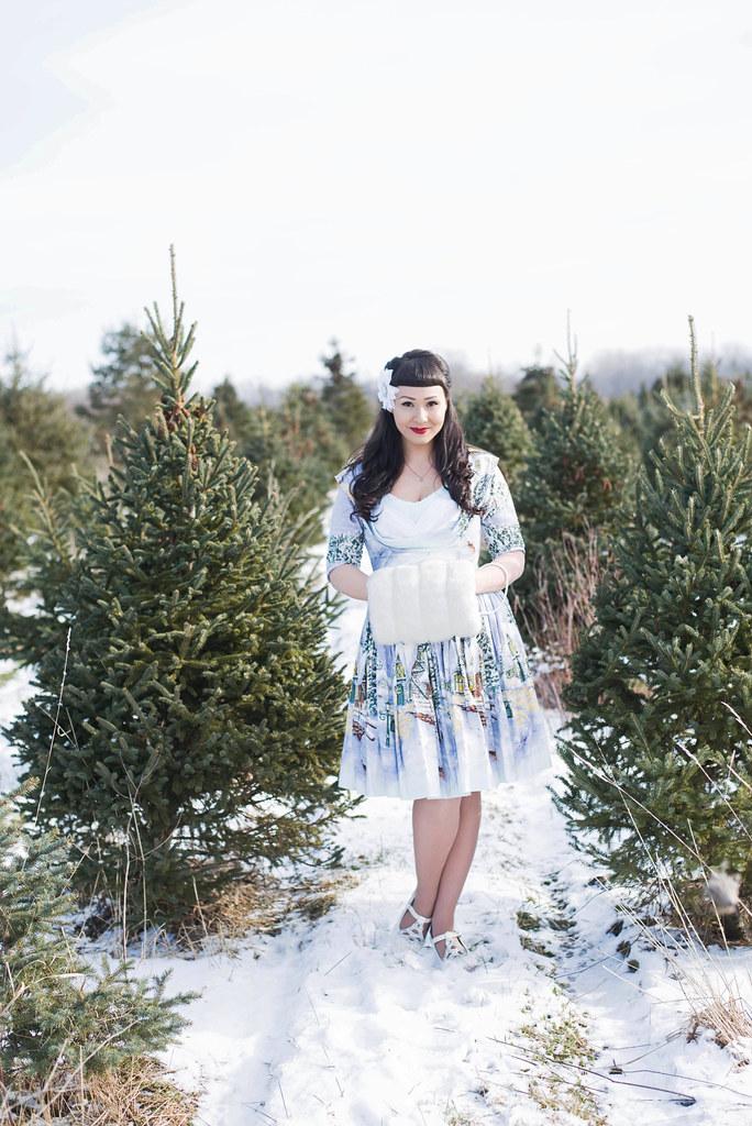 bernie dexter winter wonderland dress