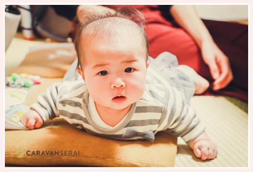 うつぶせになって顔を上げる赤ちゃん