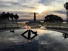 Ducks and dawn at the Flame of Remembrance