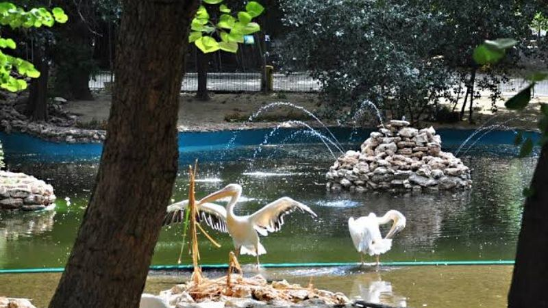 best places to visit in varna