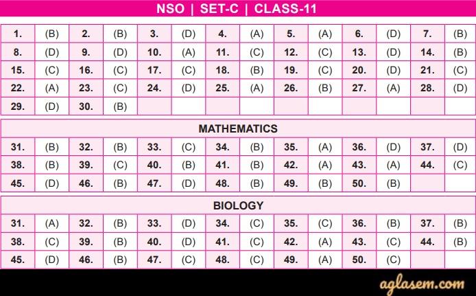 NSO Answer Key 2019-20 Class 11 Set C