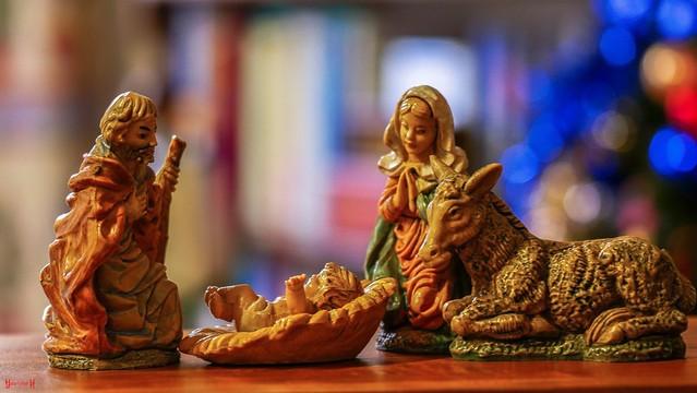 #Christmas Decoration - 7863