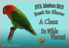 foto best in show Vie Wildekopie