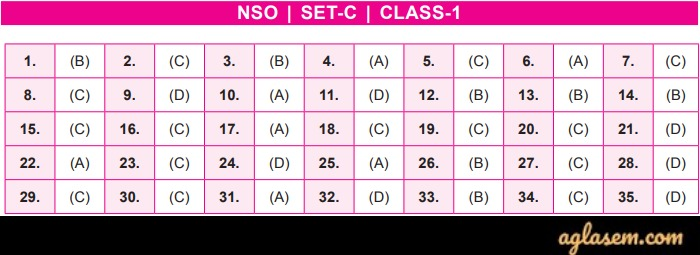 NSO Answer Key 2019 Class 1 Set C
