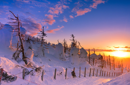 japan yamagata zao zaoropeway sunset sky winterseason snowview forzentree sunlight 日本 山形縣 藏王山麓站 藏王山頂站 冬季 雪景 藏王樹冰 夕陽 天空