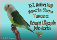 foto best in show.psd Branco Lib Joào André Teams