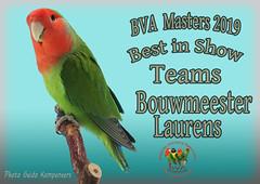foto best in show.psd Bouwmeester Laurens Teams copy