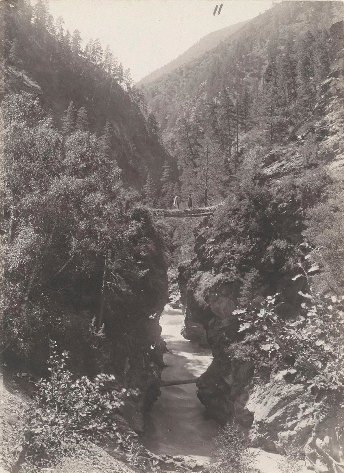 11. Восточный Кавказ. Южный Дагестан. Ущелье в долине реки Андийское Койсу, август 1898