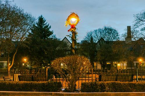 Festive Dog-Park Light