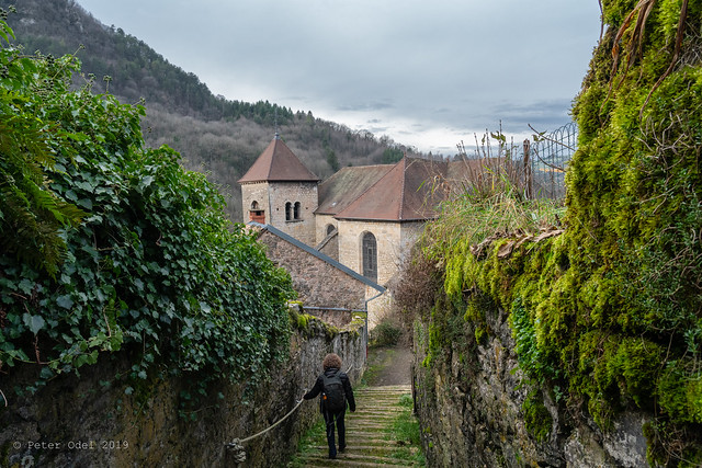 From a walk in the Jura Mountains 1
