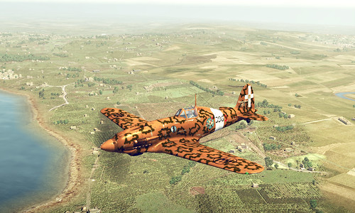 Wings of Prey (PC) - Macchi C202 v P40 Dog Fight