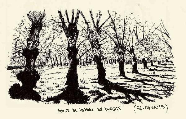 Burgos. El Parral