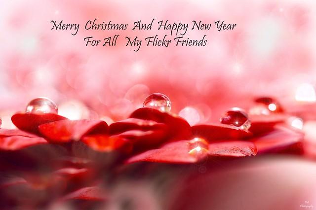Happy Holidays....
