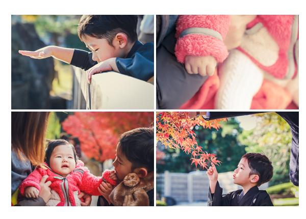七五三 徳川園でロケーション撮影 紅葉シーズン モミジ
