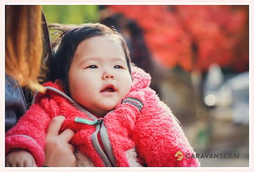 6か月の女の子赤ちゃん 冬の公園 紅葉