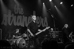 the Stranglers - Melkweg, Amsterdam, december 2019