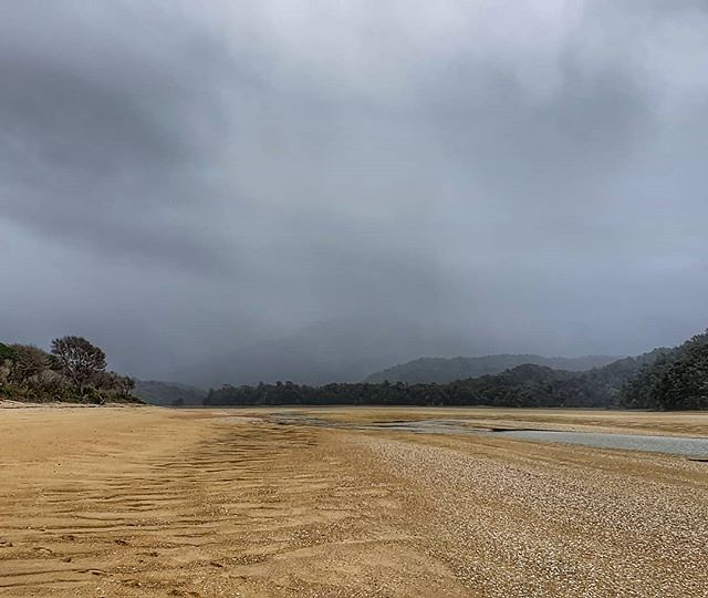 And the weather closed in as forecast. A dreich last 2km to Awaroa Hut #abeltasmannationalpark #decemberadventure #day1