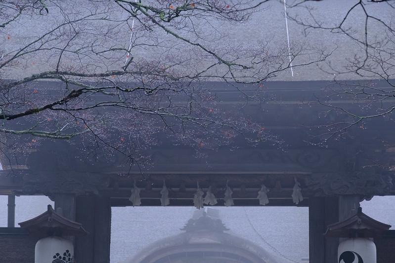 Kongobu-ji Temple / Koyasan