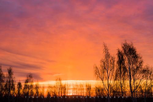 landscape art finland sun rise scenery clouds pink red colors beautiful