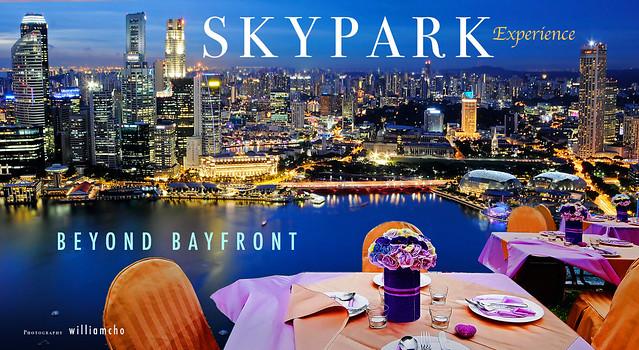 SkyPark 3 DSCF2119