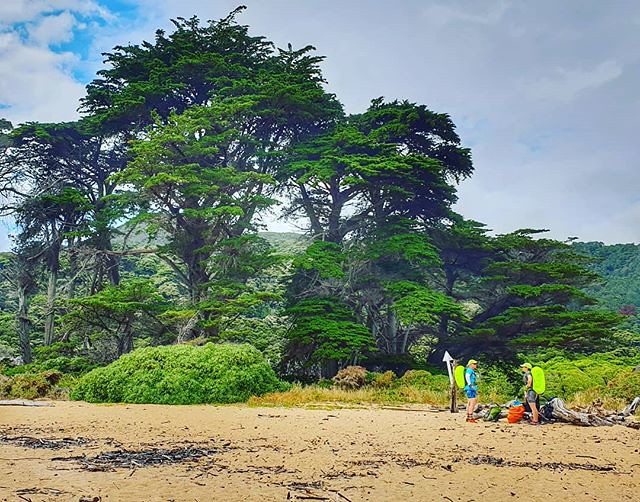 The sun has been trying hard to beat the rain... #whariwharangibay #abeltasmannationalpark #decemberadventure #day2 #lastleg #justupandoverthehilltogo