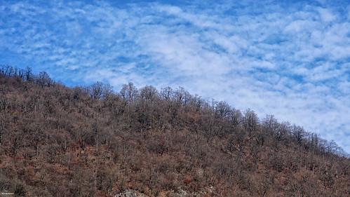 nature landscape view iran persia sky blue cloud jungle forest autumn mountain