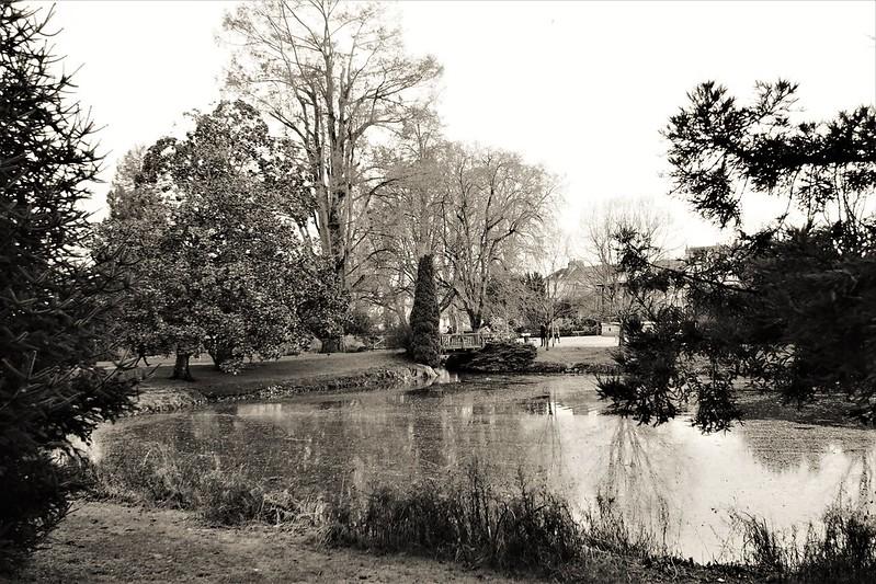Jardin des Prébendes à Tours 49237989383_0a994f8b6d_c