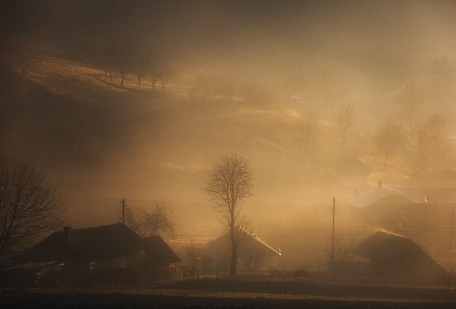 foggy morning in the village