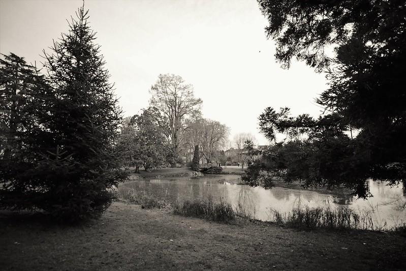 Jardin des Prébendes à Tours 49238685987_60a0c59ca0_c