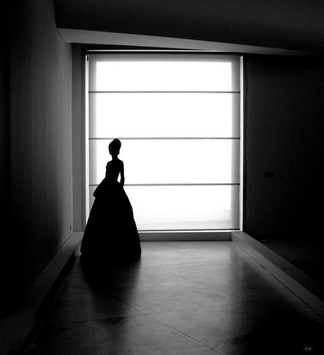 Fotografia em Palavras: Silhueta a preto e branco