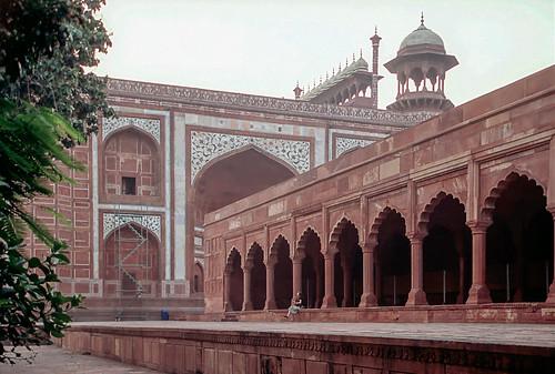 Rajasthan (22 of 46).jpg