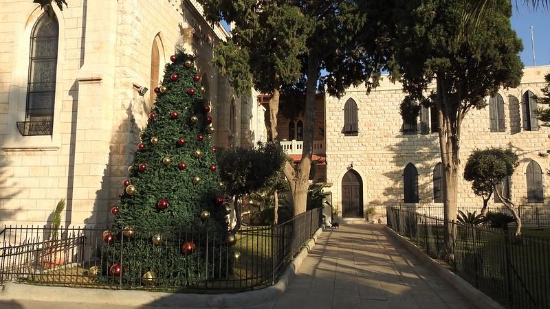 Елка около церкви