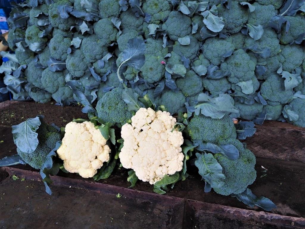 花椰菜 (1)