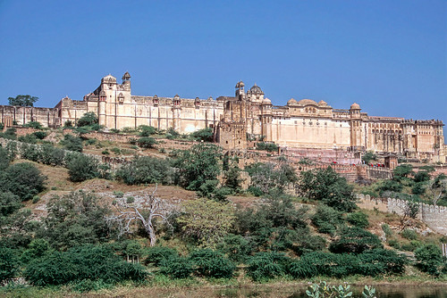 Rajasthan (39 of 46).jpg