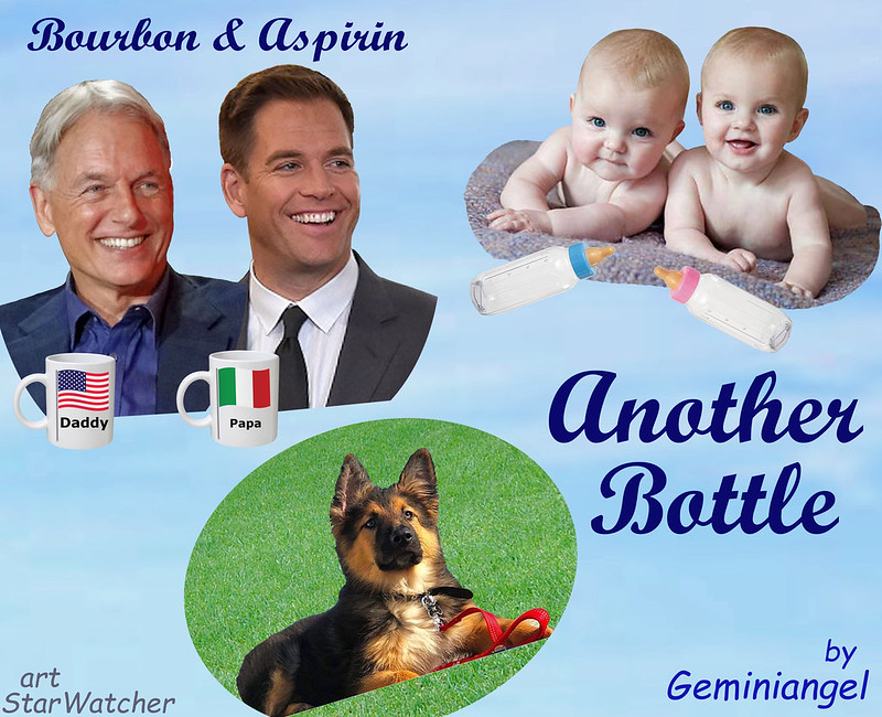 descript  Background is pale blue sky with wispy clouds.  Top right: twin babies lie on a gray rug, smiling and looking at viewer, with baby bottles lying in front of them.  Middle left: Busts of Tony and Gibbs stand shoulder-to-shoulder, smiling at the babies.  Each has a coffee mug in front of him; Gibbs's has an American flag that reads 'Daddy'; Tony's has an Italian flag that reads 'Papa'.  Middle bottom: Half-grown Zuma (shaggy black and tan shepherd/collie mix) lays on a patch of grass, looking up at the babies.    Text reads 'Bourbon & Aspirin - Another Bottle'.