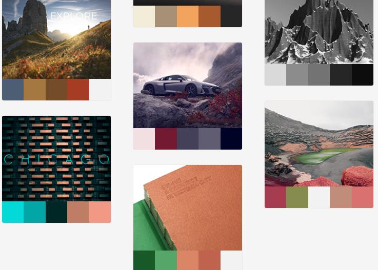 Website Inspirasi Palet Warna Terbaik