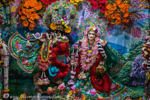ISKCON Vrindavan Deity Darshan 19 Dec 2019