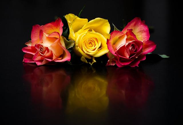 Floral Still Life 1