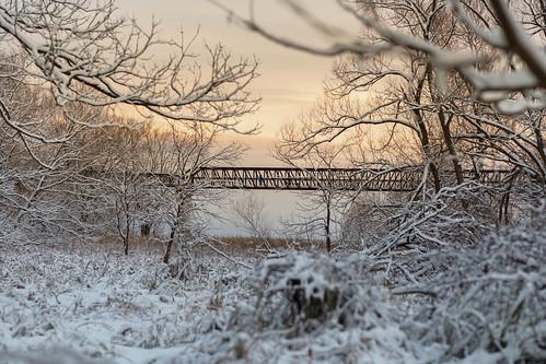 petticoatcreek bridge snow cold person trees sunset