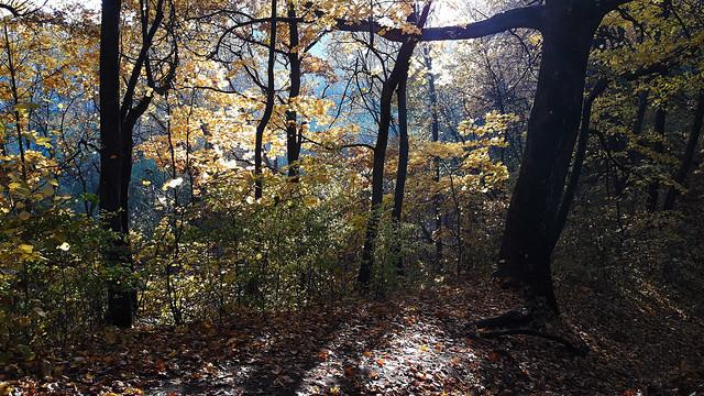 Colorful Autumn 07