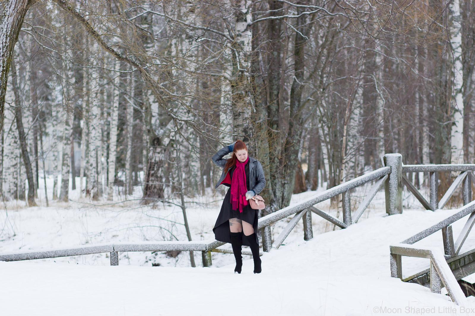 Talvi-puinen-silta-asukuva