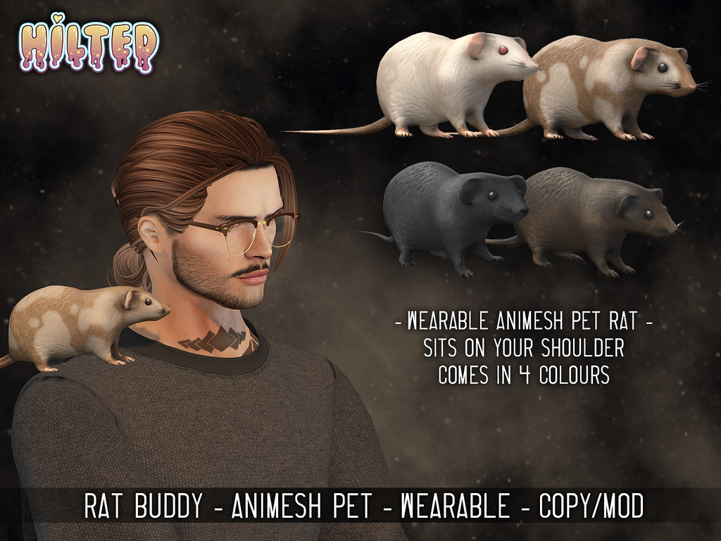 HILTED – Rat Buddy Ad