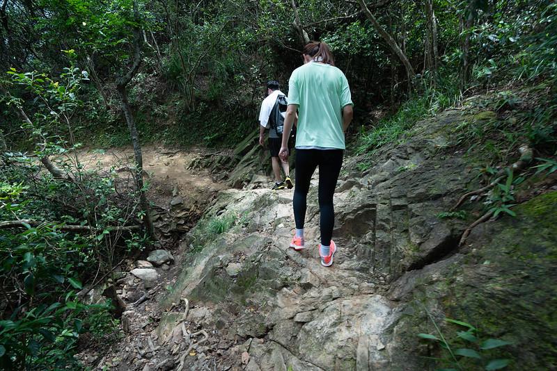香港ドラゴンズバック コース