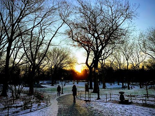 winterishere nyc centralpark winter