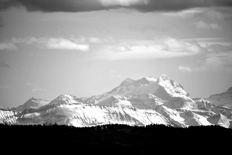 Alps 05.03 (5) Summit