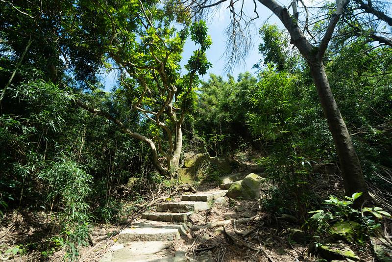 香港ドラゴンズバック ハイキング